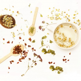 Shop voordelig in onze kruidentuin: nu 10% korting op alle kruidenthee!🌿 Gebruik de code 'KRUIDEN' bij de checkout en ontvang korting op je favoriete kruiden en kruidenblends 💚  Actie tm 16 mei  #teabaramsterdam #looseleaftea #herbaltea #herballife #healthylifestyle #caffeinefree #teablends #tealife🍃 #kruiden #kruidenthee #verveine #kamille #hibiscus #theedrinken #theeliefhebber #kortingscode